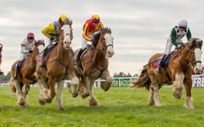 CLYDESDALE RACE – Exeter Race programme